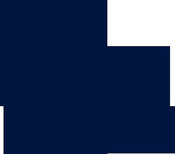 Leones LBM